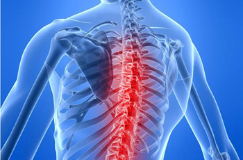 Musculoskeletal Disorders (MSD) – An Overview of Preventive Methods
