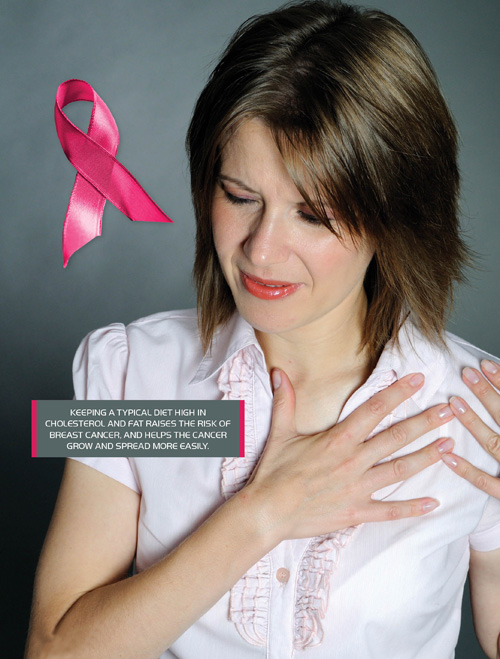 High fat and cholesterol in your diet can help breast cancer