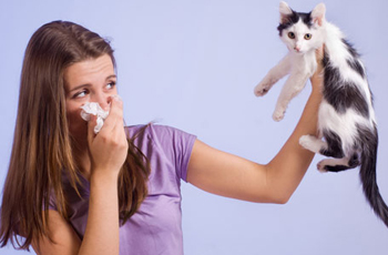 Allergies-to-Pets