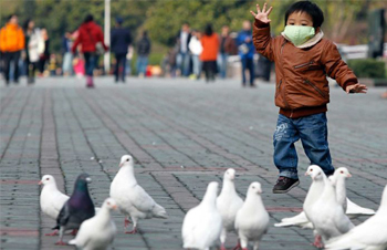 Bird Flu: Fundamental Questions and Answers You Need To Know