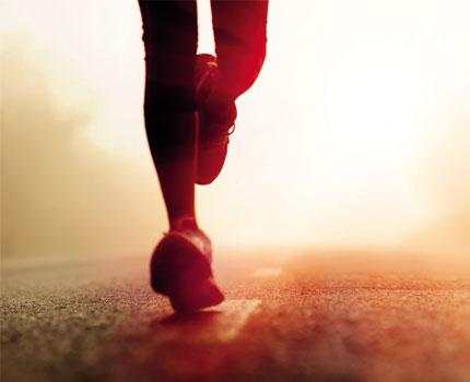 fitness-program