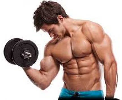 Rules to follow to build muscles