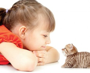 Adopt a Pet for Optimal Wellbeing
